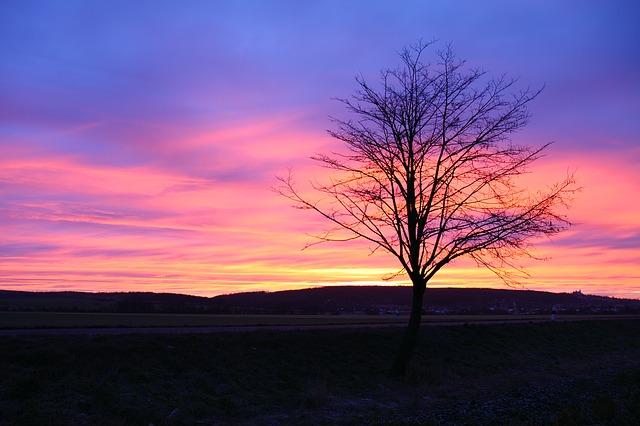 sunrise-20546_640